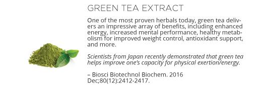 Vasayo Energy Ingredient - Green Tea Extract