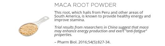 Energy Microgel Ingredient - Maca Root