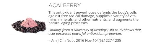 Renew Ingredients - Acai Berry